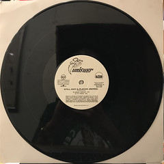 BIG PUNISHER:STILL NOT A PLAYER(RECORD SIDE-A)