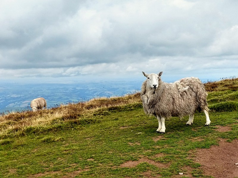 Wales IX
