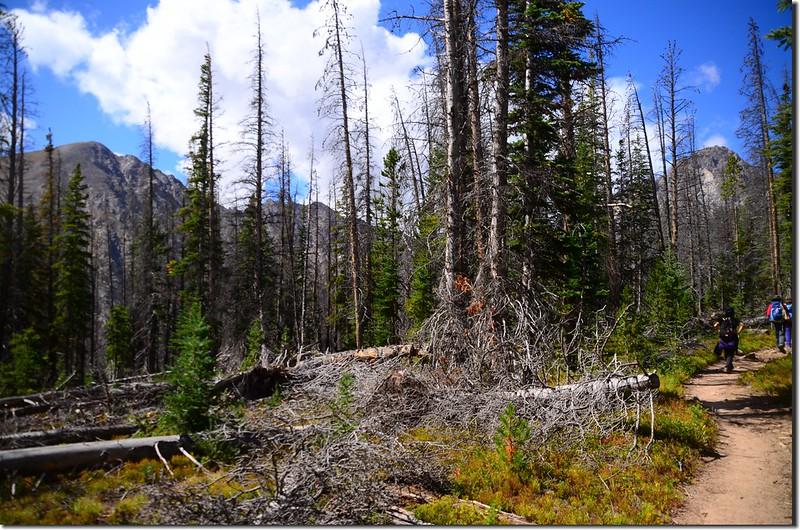 Salmon Lake Trail (5)