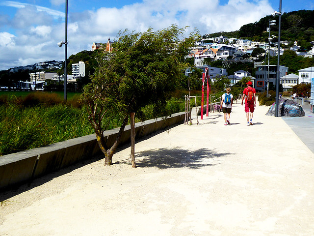 Wellingtons Waterfront walk begins near to Queens Wharf and continues along to Te Papa and onto Oriental Bay, taking about an hour but can be enjoyed over a full morning or afternoon, and is an iconic walk on a still sunny day.