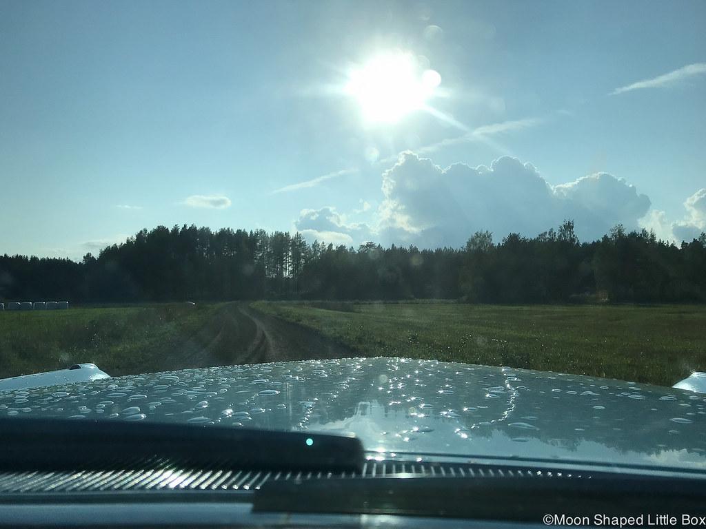 cadillac coupe de ville, maalla, polvijärvi, aurinkoinen päivä