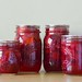 Pickled Italian Plums by osiristhe