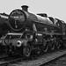 5690 Crewe Works R00355a D210bob DSC_0021