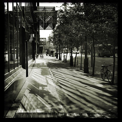 Light and Shadow in Downtown Ottawa