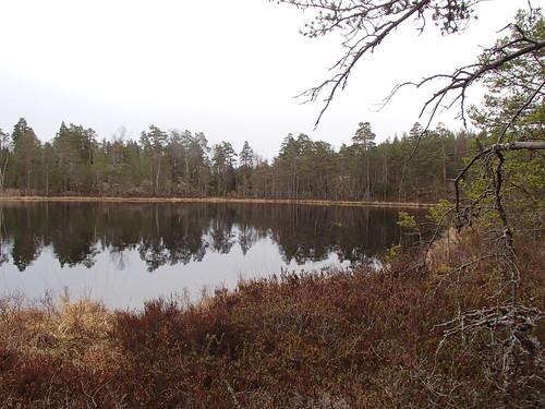 SÖ E17 Finnsjön1