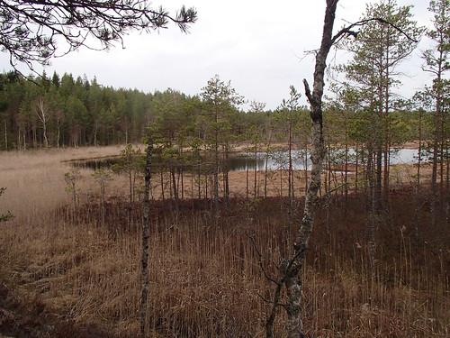 SÖ E17 Aborrsjön1