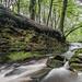 Roddlesworth Waterfall