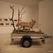 Turner Gallery, Margate, Kent UK