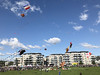 Proffe-drager-Kristiansand-Dragefestival