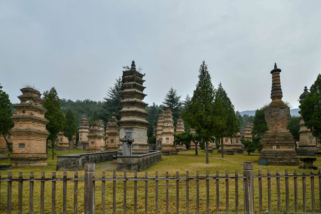 嵩山塔林 Pagoda Forest of Shaolin Temple