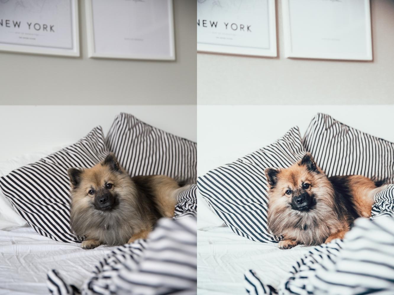 annnye presets lightroom preset valokuvaus-39-side