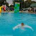 dog swim 20181059