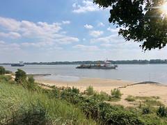 Nachmittags an der Elbe