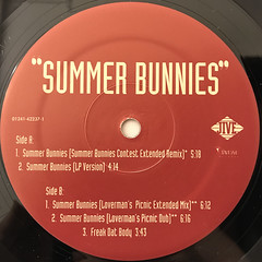 R. KELLY:SUMMER BUNNIES(LABEL SIDE-B)