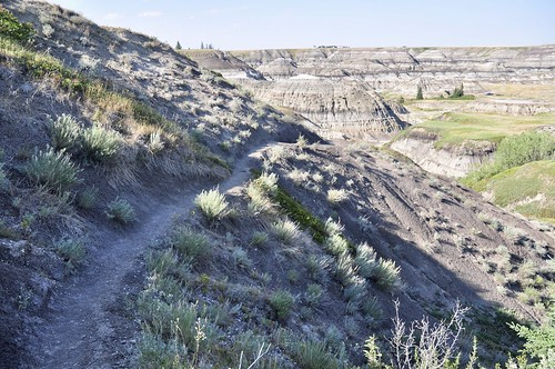 Trail down into Horseshoe Canyon, Alberta
