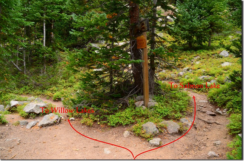 The junction of Willow Lake Trail & Salmon Lake Trail