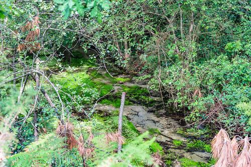 06-Ruisseau de Capcos