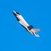 Lockheed Martin F-35 Lightning II 2018-03.jpg