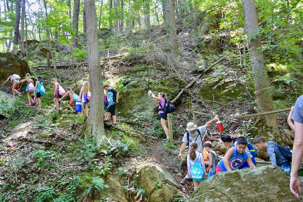 Sawmill Creek hike