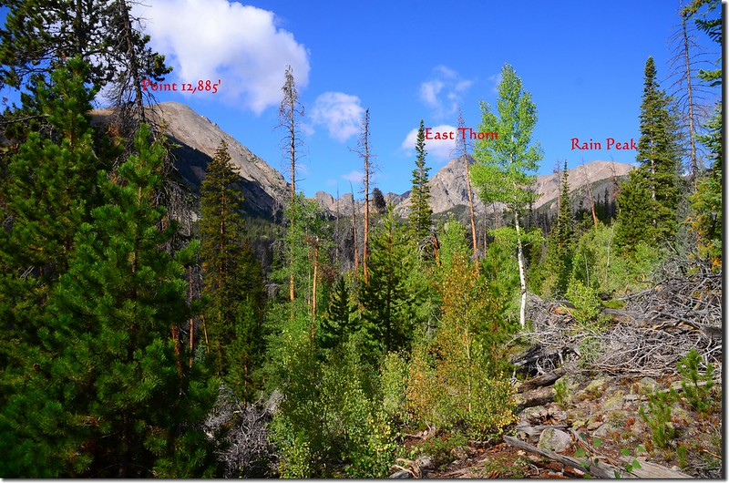 Mountain views from Willow Lakes Trail (4)