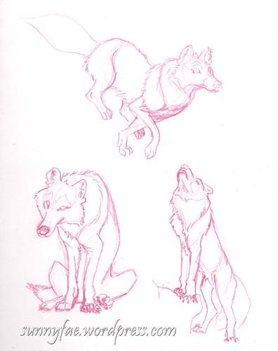 wolf gesture sketches 1