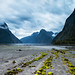 Milford Sound NZ 4 by Wisconsin Fox
