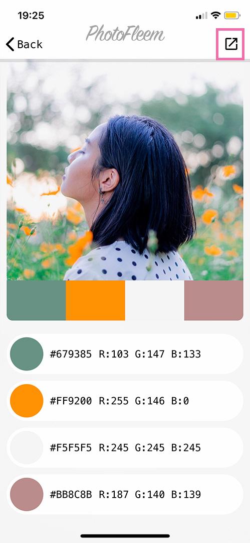 Palette-cam04
