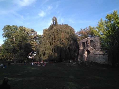 Sint-Donatuspark 3