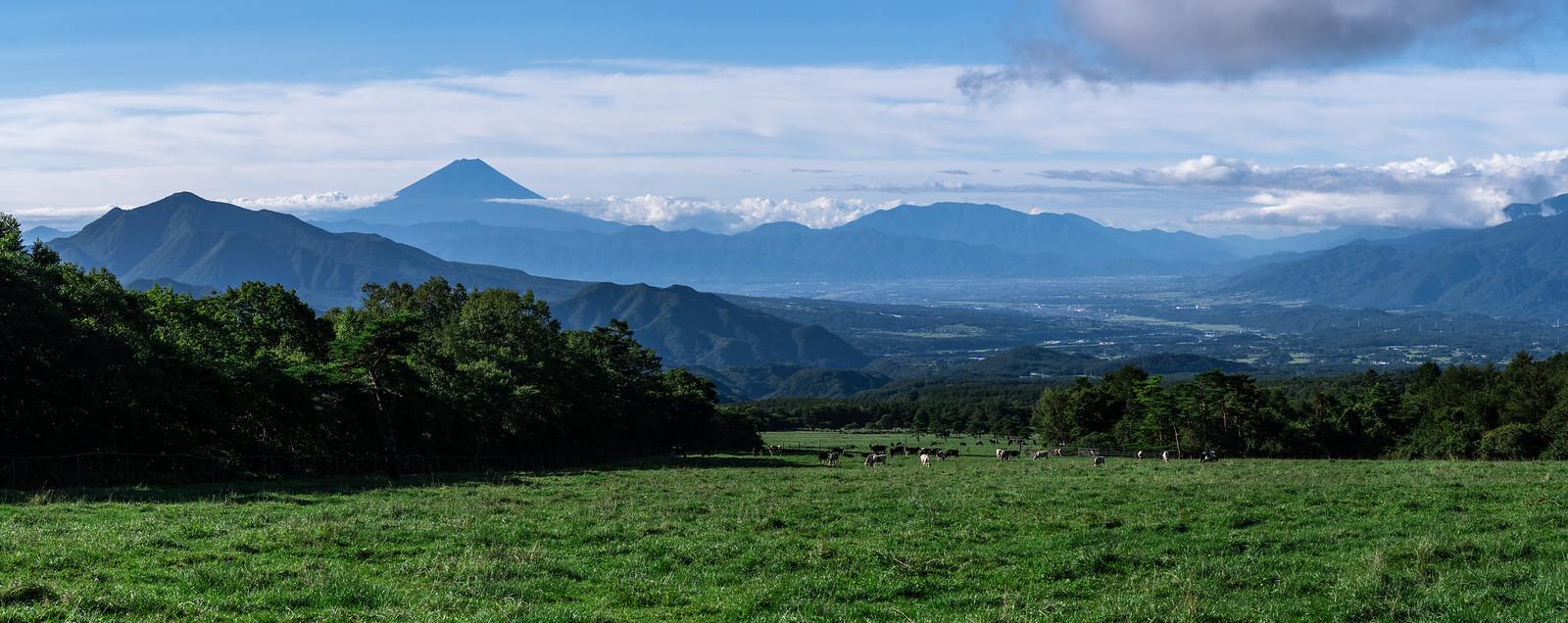 Mt Fuji Panorama