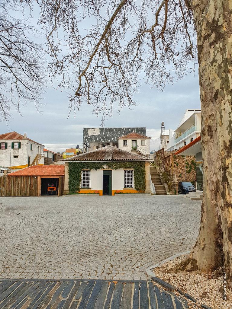 2018.- Douro (Isaura+Lurdes) (95)