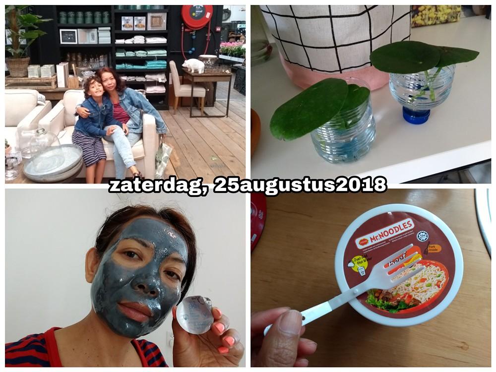 25 augustus 2018 Snapshot