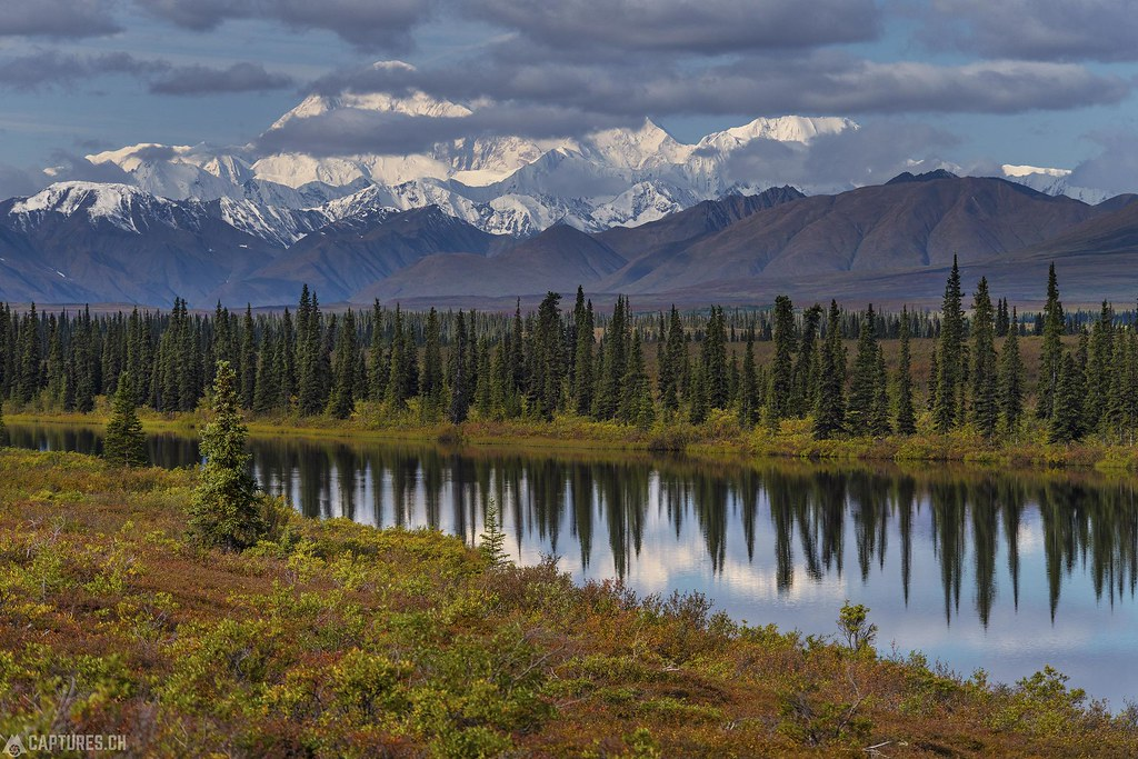 Denali at the lake - Alaska