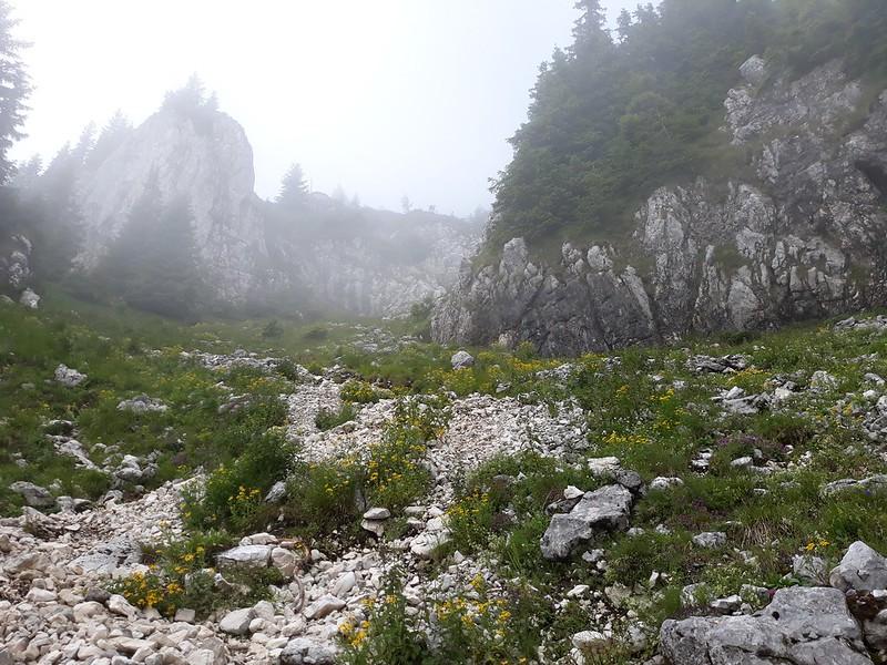 Drumetie in Piatra Craiului - Zarnesti-Creasta Nordica (17)