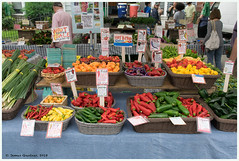 Many Colorful Peppers