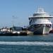 IMG_9192 - Shieldhall & Azura  - Southampton Docks - 15.09.18