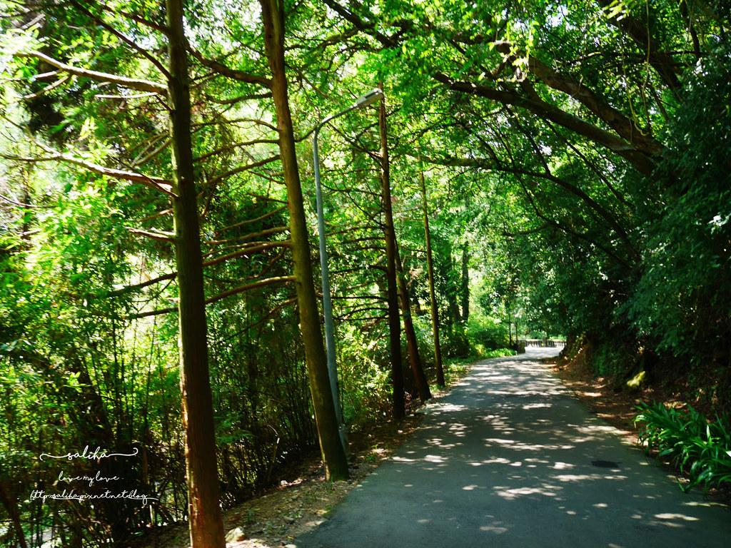陽明山花鐘公園附近景點 (3)