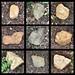 Nine Rocks in my Back Yard by byzantiumbooks