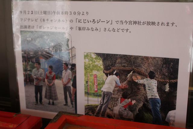 chichibuimamiya015