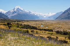 New Zealand - Mount Cook