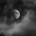 Cradle of Clouds by Noctcaelador