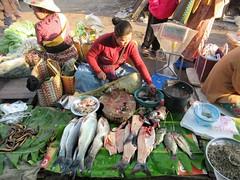 Mingalar Fish Market