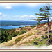 View from Bald Peak - Acadia National Park by acadia_breeze4130
