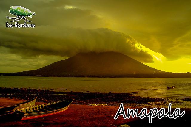 AMAPA26