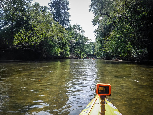 French Broad River - Rosman to Island Ford-172