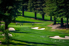 2018 08 Sharon Heights Golf