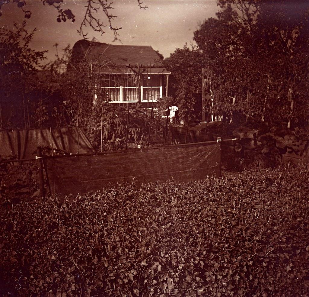 Gartenhaus (Andere) (2)