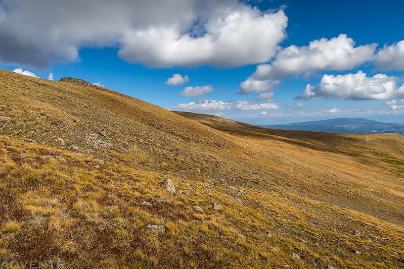 Endless Tundra