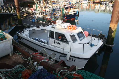 Fishing Boat P17 WAHOO