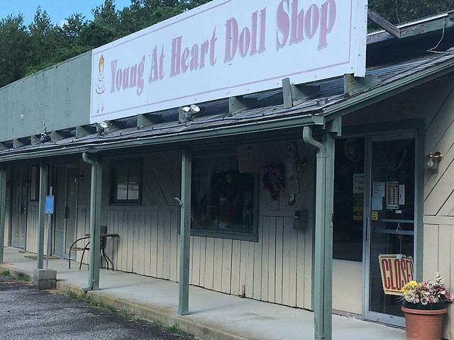 Young At Heart Doll Shop Connecticut