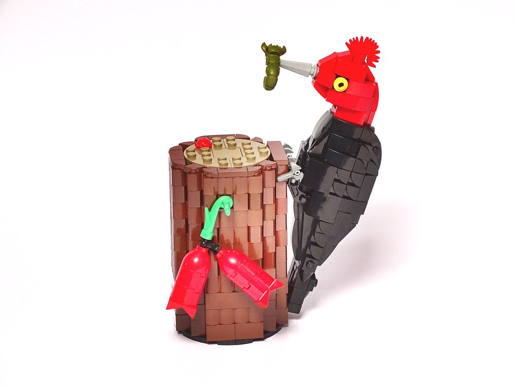 Magellanic Woodpecker (Campephilus magellanicus) LEGO model